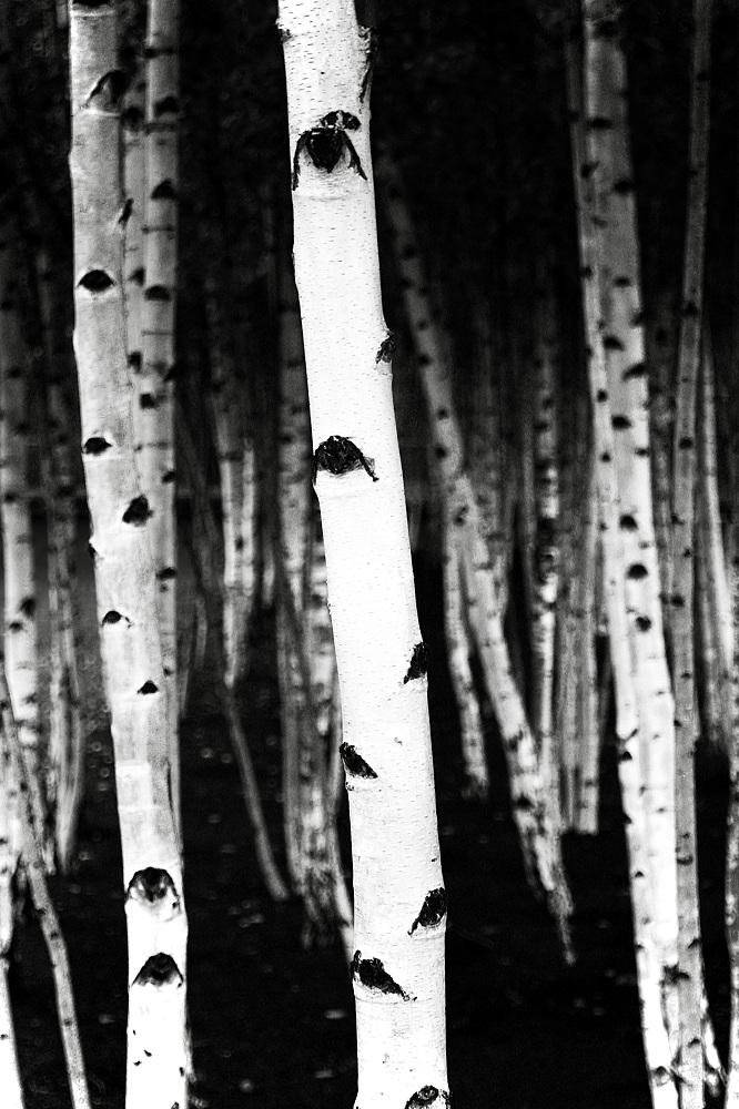 best-photos-of-the-tate-modern-gallery-2.jpg