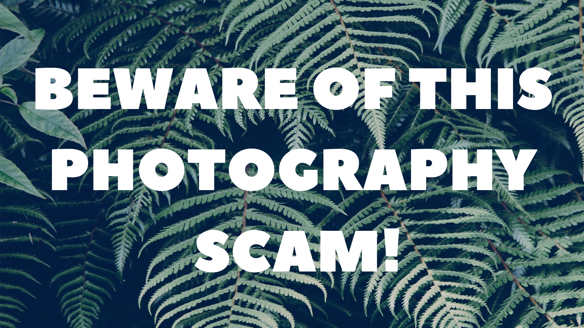 beware-of-this-photography-scam.jpg
