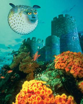 Pufferfish Girl