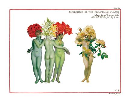 """Sisterhood of the Traveling Plants"""