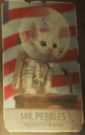 Here's Mr. Pebbles, the first cat in space, in case things got a bit dark there, or you're from a college and need this by now.