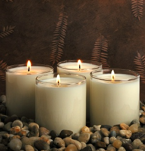 """""""These are the best soy candles in the world, I have tried others only to have them tunnel down after a couple of burns whereas Robinz Soy Candles burn clean all the way to the end. I'll never buy any other soy candle.""""   Judy Taylor, January 2011"""
