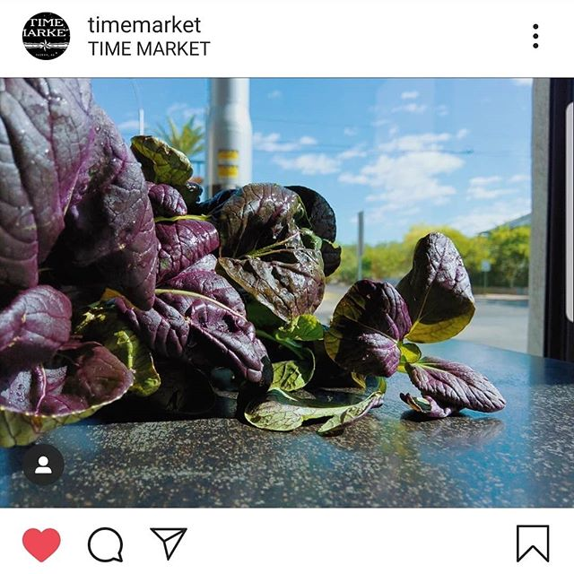 Repost @timemarket  Making things look beautiful.  #sustainability #tucson #eatlocal #lettuce #salad #azgrown #localeats