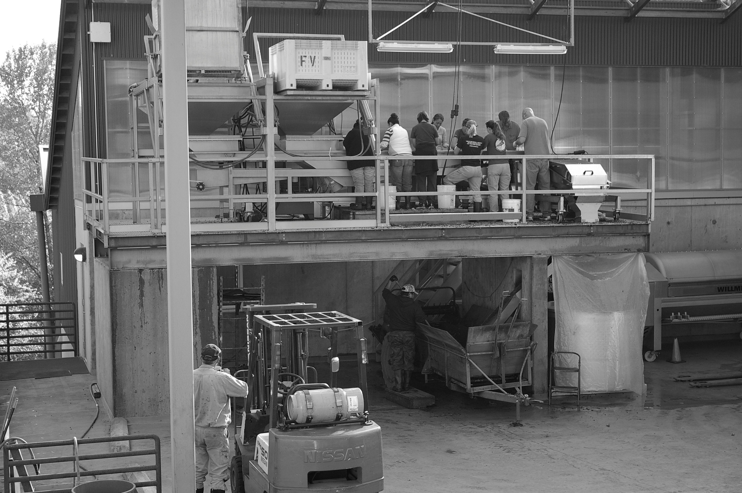 crushpad b and w.jpg