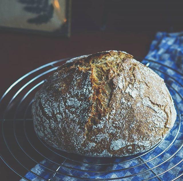 Planen var å bake brød i helga, men den planen gikk i vasken. Det var dette med å huske og lage deigen kvelden før når man baker eltefritt 😉 Men godt ble det på en onsdag også! 😀 #brød #eltefritt #brodogkorn #grytebrød #kosthold #frokost #breakfast #suntkosthold #hverdagsmat #grovbrød