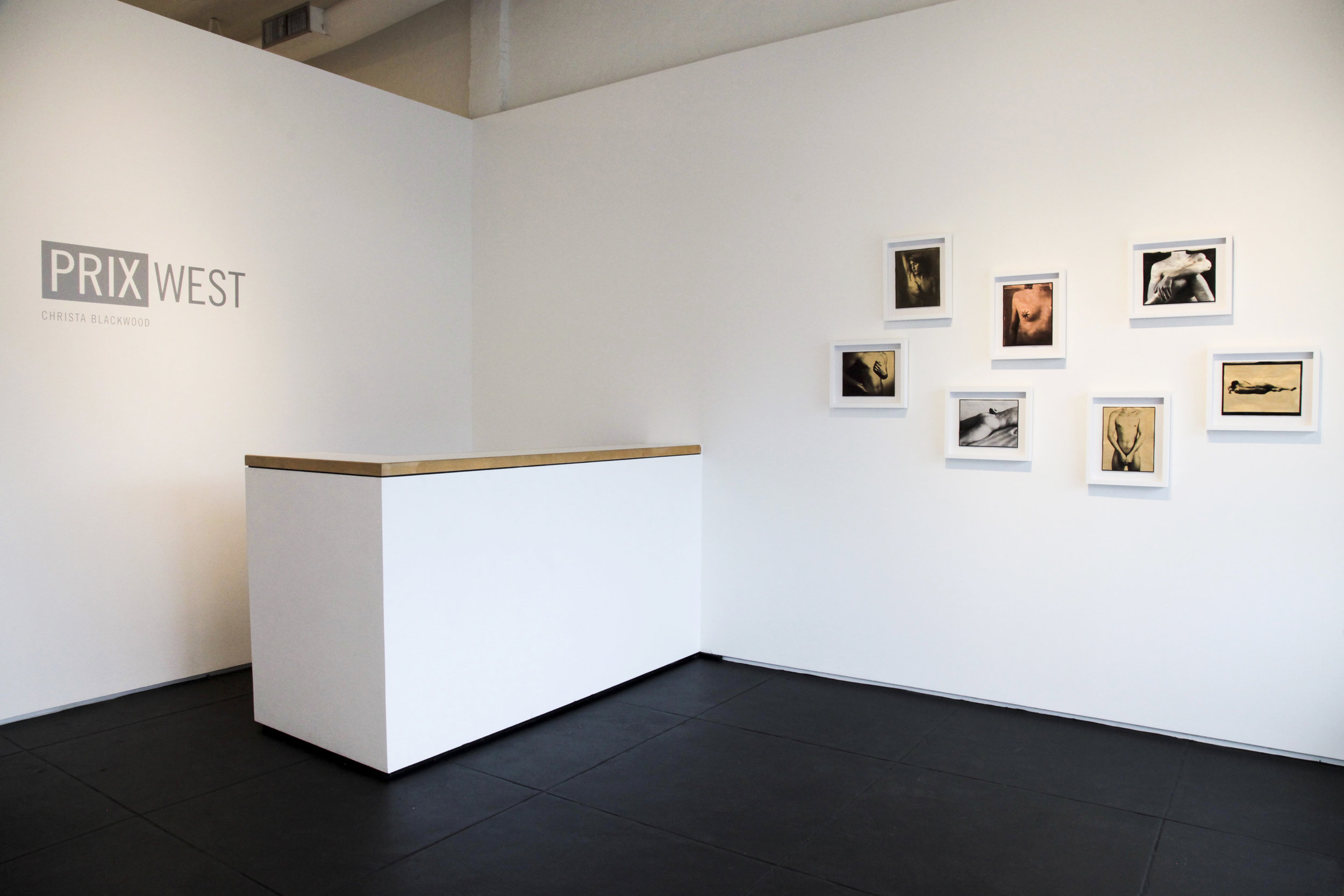 Beauty Revisited installation shot, Capsule Gallery, Houston 2017