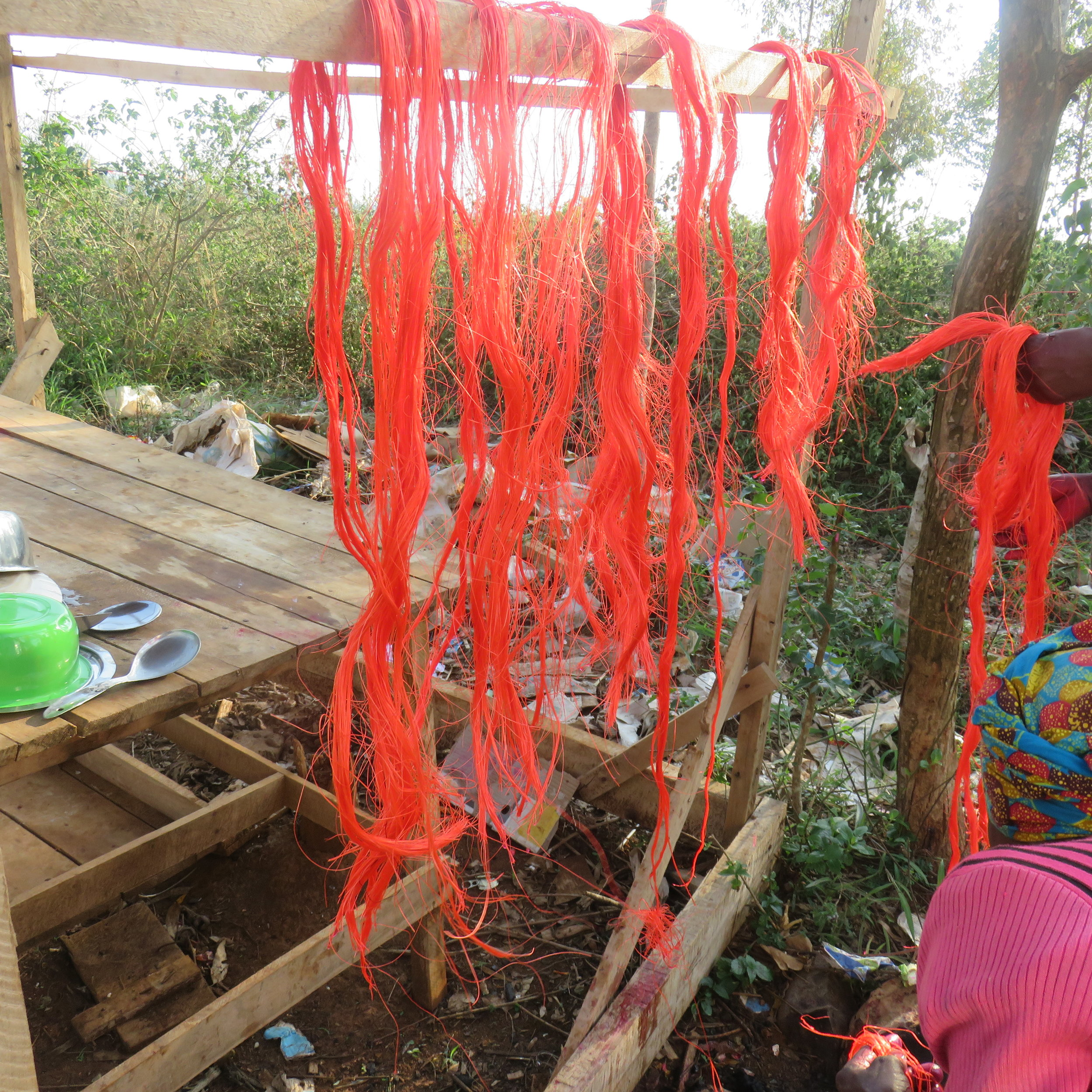 Figure 7: Newly-colored fiber having been hung to dry.