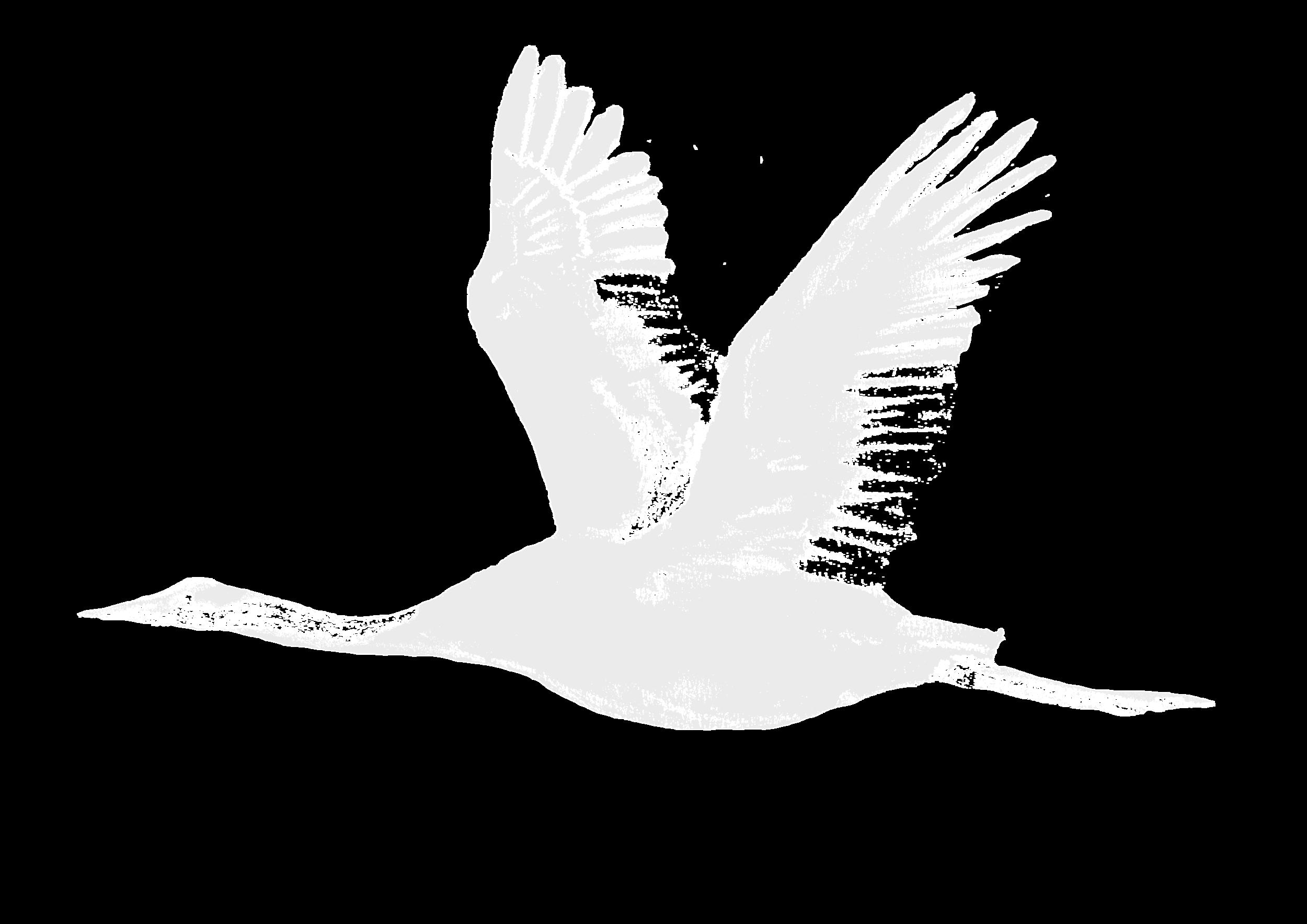 Flying Crane 2.png