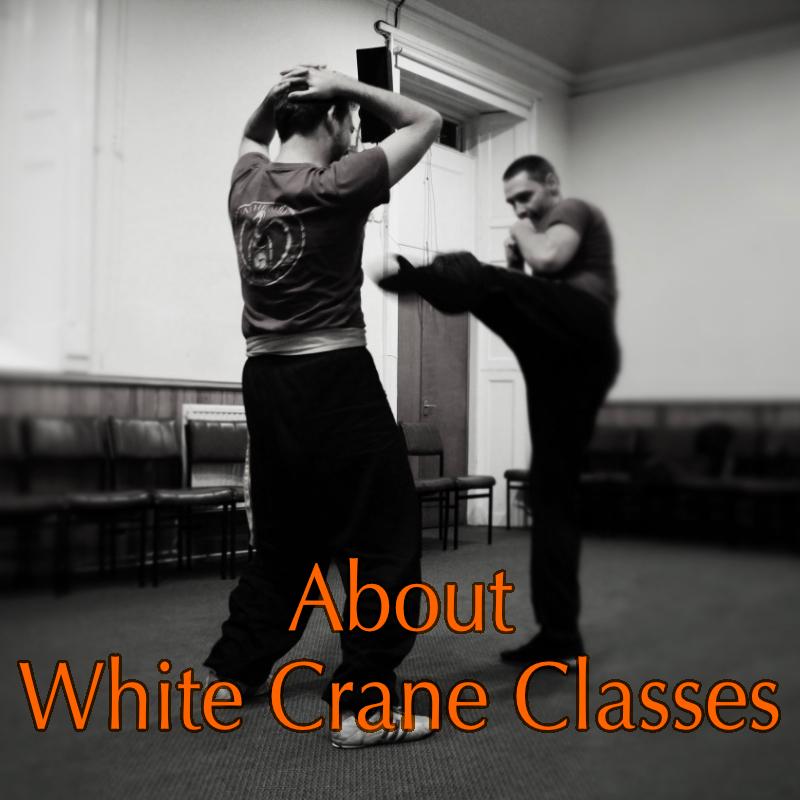 Chinese White Crane Kung Fu Class
