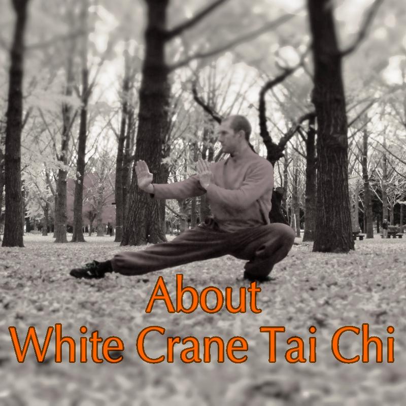 White Crane Style Tai Chi Chuan