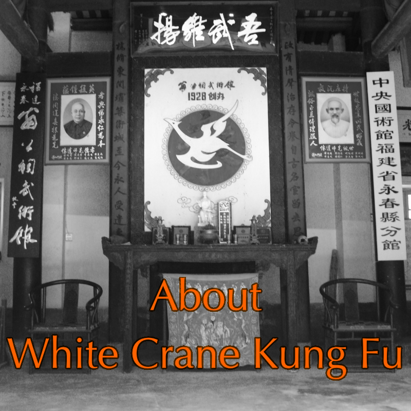 Yong Chun White Crane classes in Fujian
