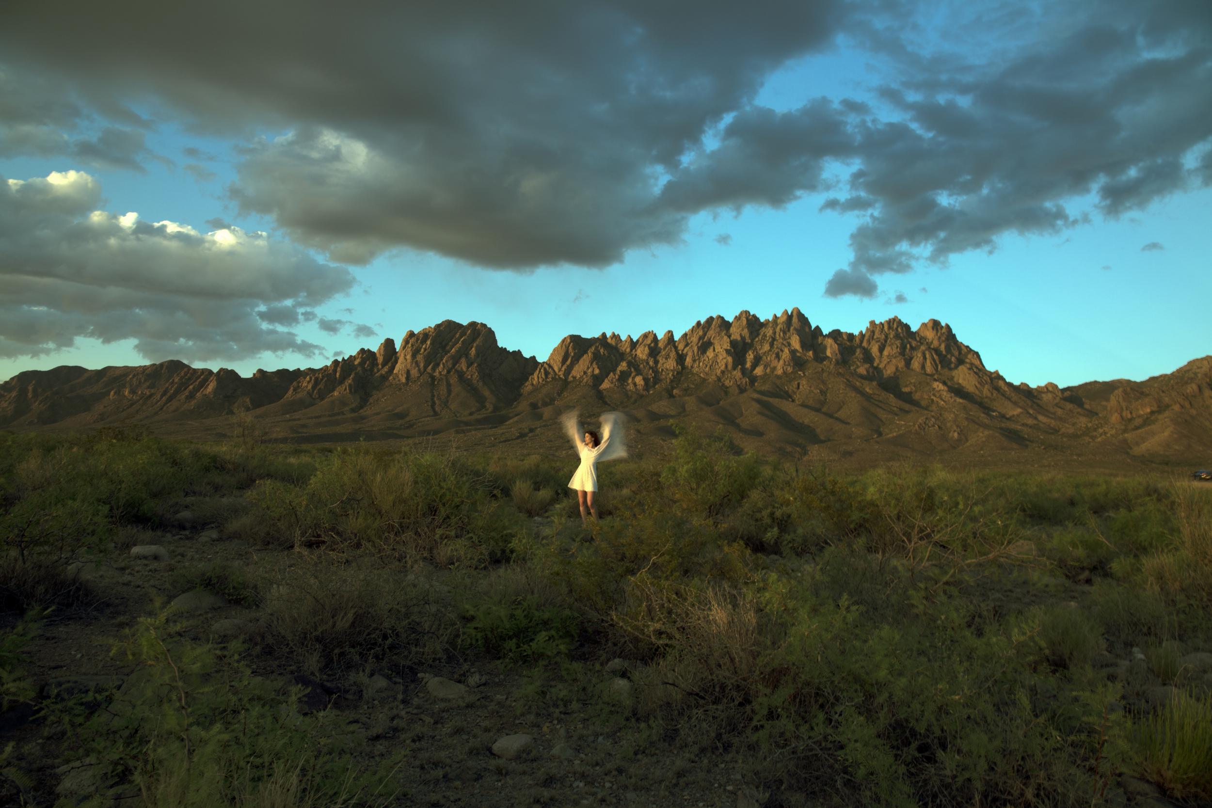 desertspring2.jpg