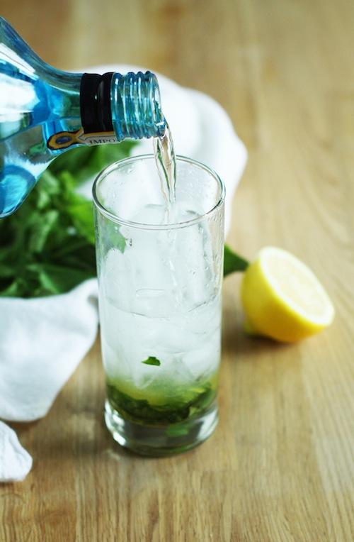 Basil Gin Fizz Recipe