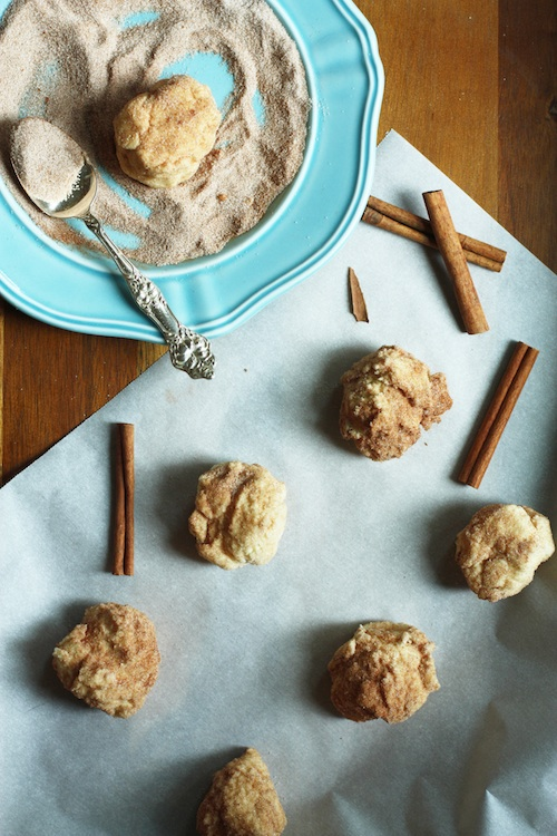 Snickerdoodle Cookie Dough :: Set the Table