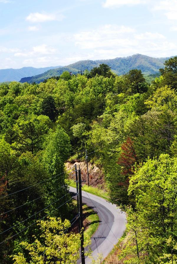 Smoky Mountain View | Set the Table