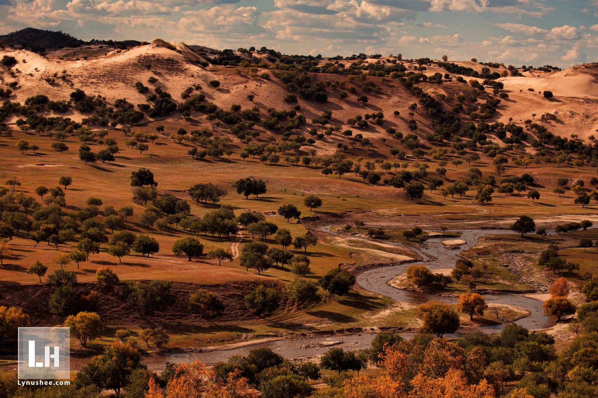 Mongolian Autumn