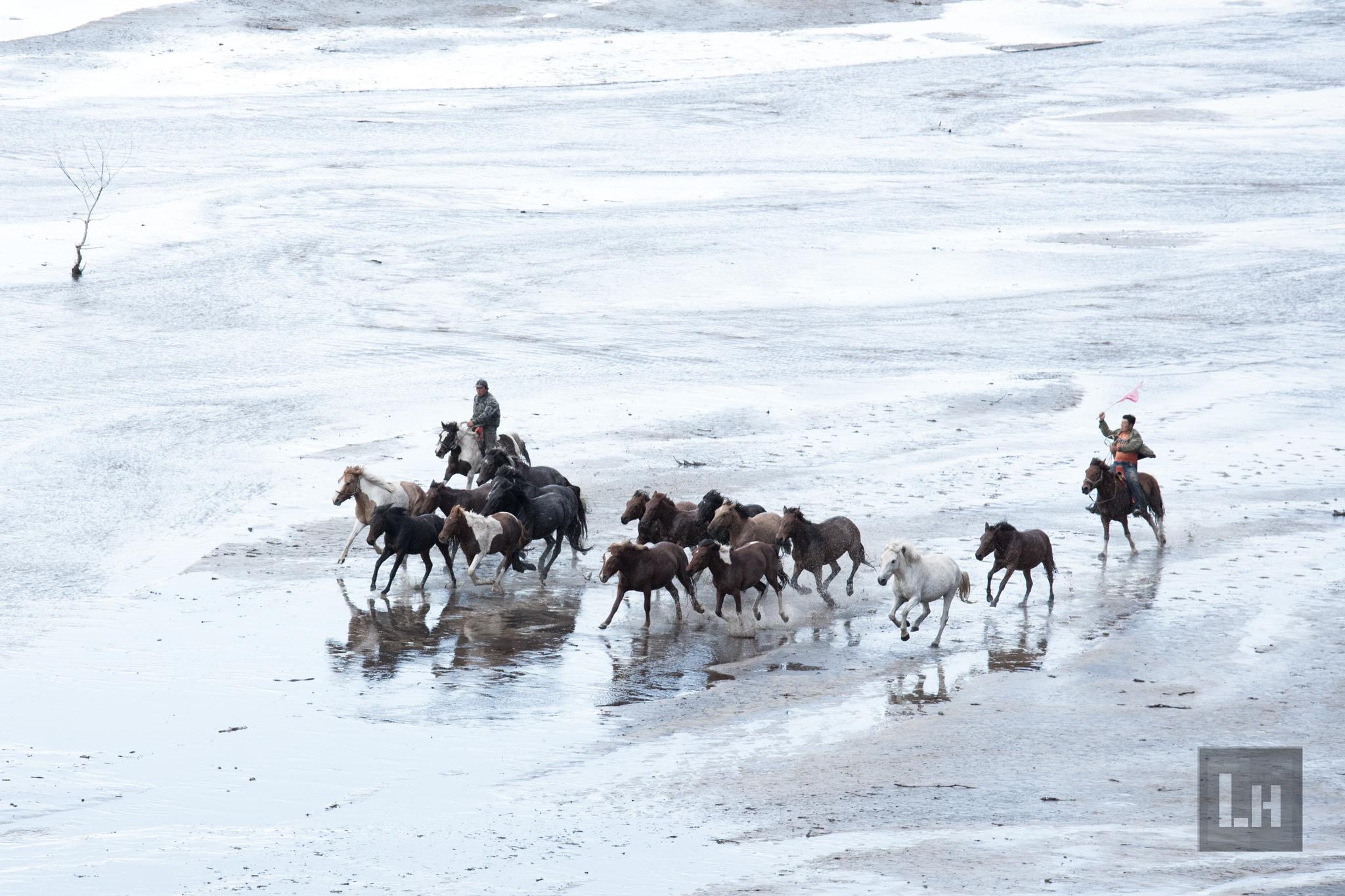 Mongolian Races