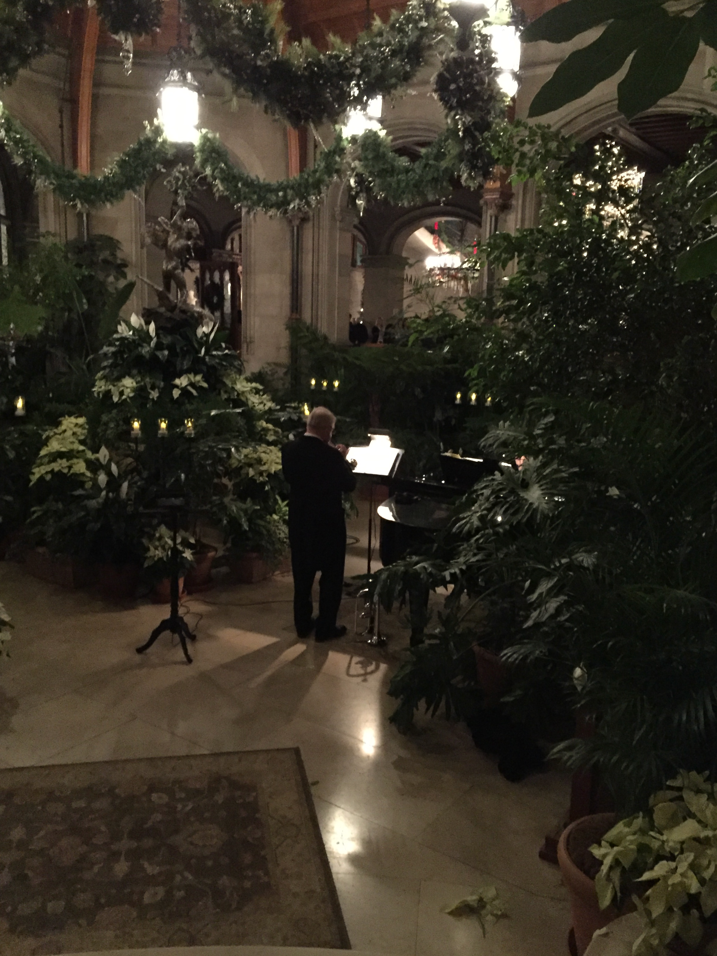 A musician plays amid the greenery in the atrium.