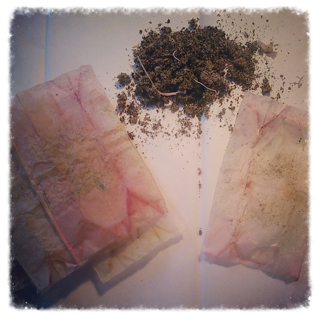 Cleaning out and preparing these tea bags.
