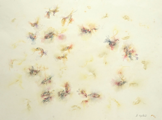 Firefly Lilies raw 2