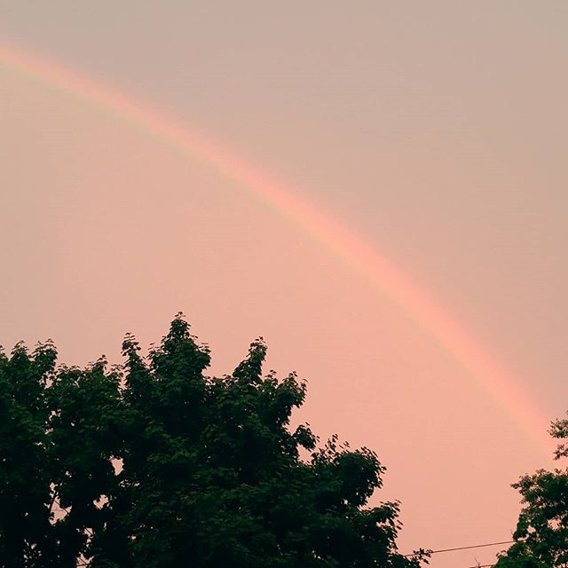 Tonight's magical beauty fix, brought to you by Mother Nature 😍💫 . . . . . . . . . . . #rainbow #sky #rainyday #rainbow🌈  #skyline #summerinthecity #summerdiaries #magic #nature #godsgift #wonder #skyview #pinksky #afterthestorm #lookup #grateful #beauty #beautyeverywhere #naturelovers