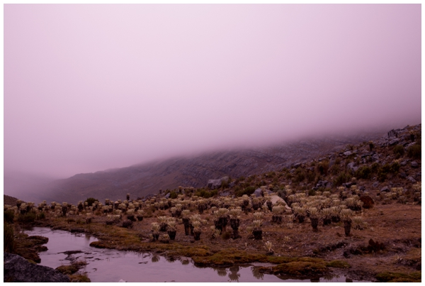 Documentary-landscape-photography-El-Cocuy-National-Park-colombia_0018