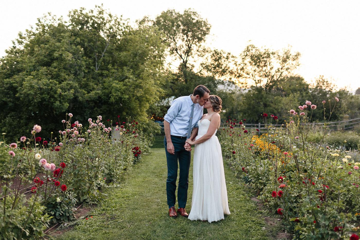Lyons-Farmette-Wedding-Photographer-Lucy-Austin-Flash-Mob-Dance-68.jpg