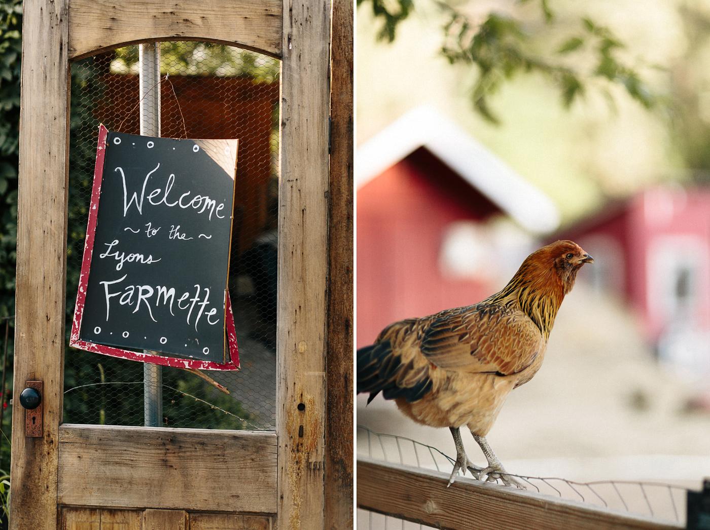 Lyons-Farmette-Wedding-Photographer.jpg