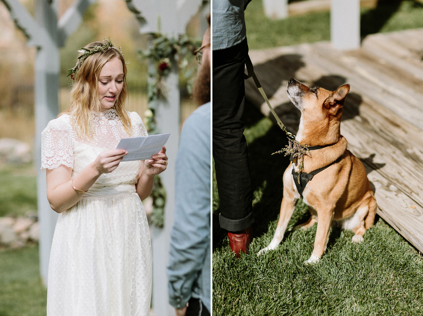 Dog watching bride during wedding ceremony vows