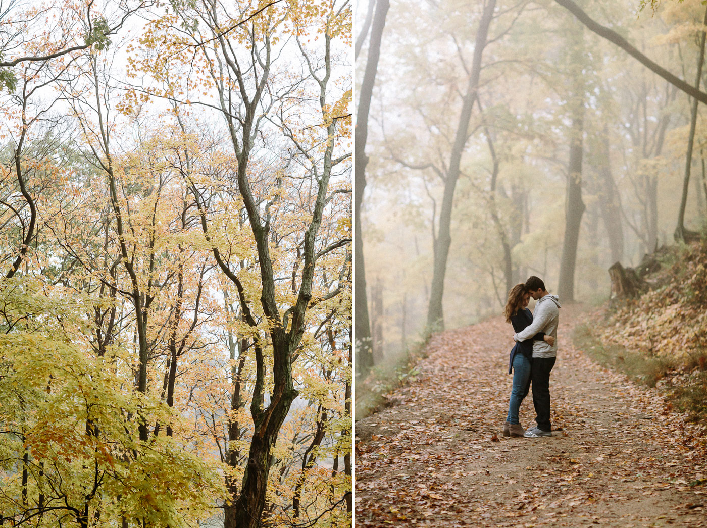 Foggy forest trees leaves with couple on path