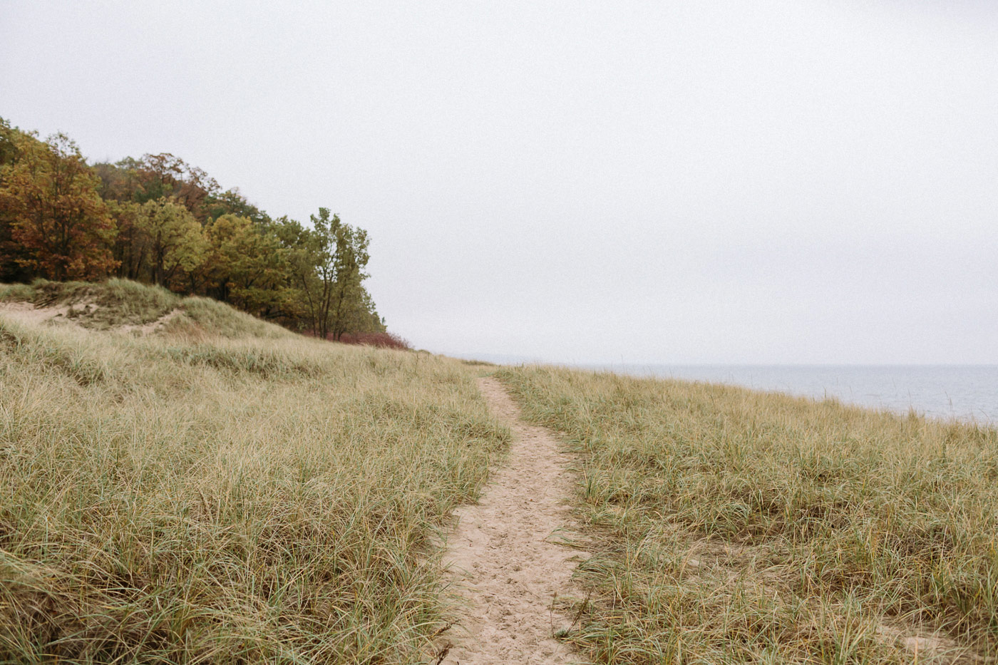 Saugatuck Dunes State Park path along beach
