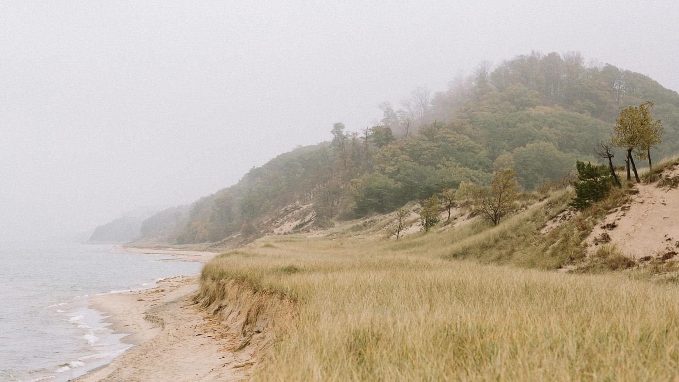 Saugatuck Dunes State Park landscape