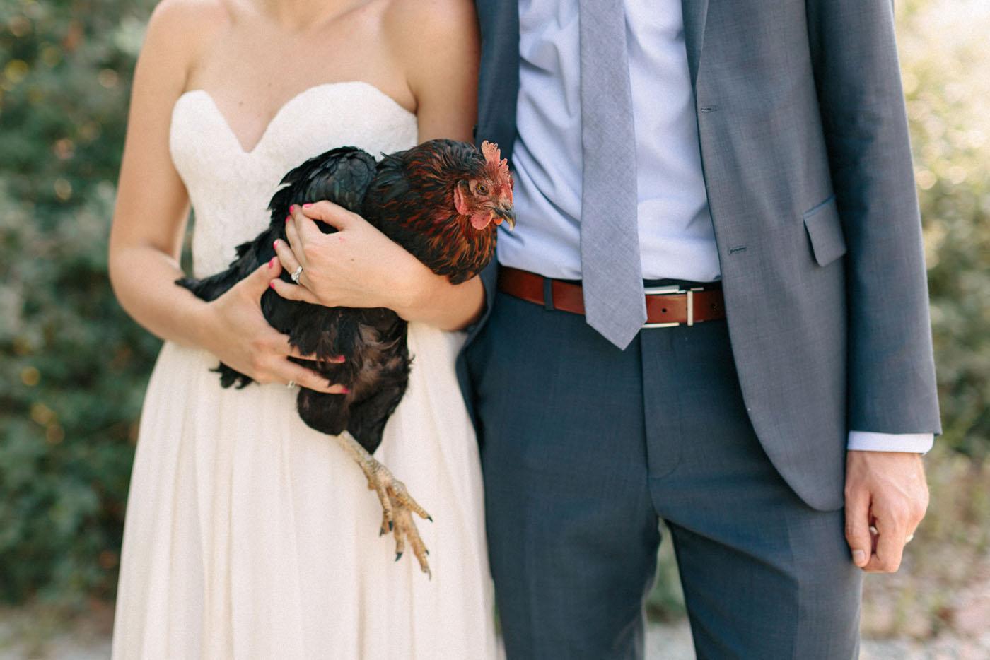 Lucy-Austin-Chicken-1.jpg