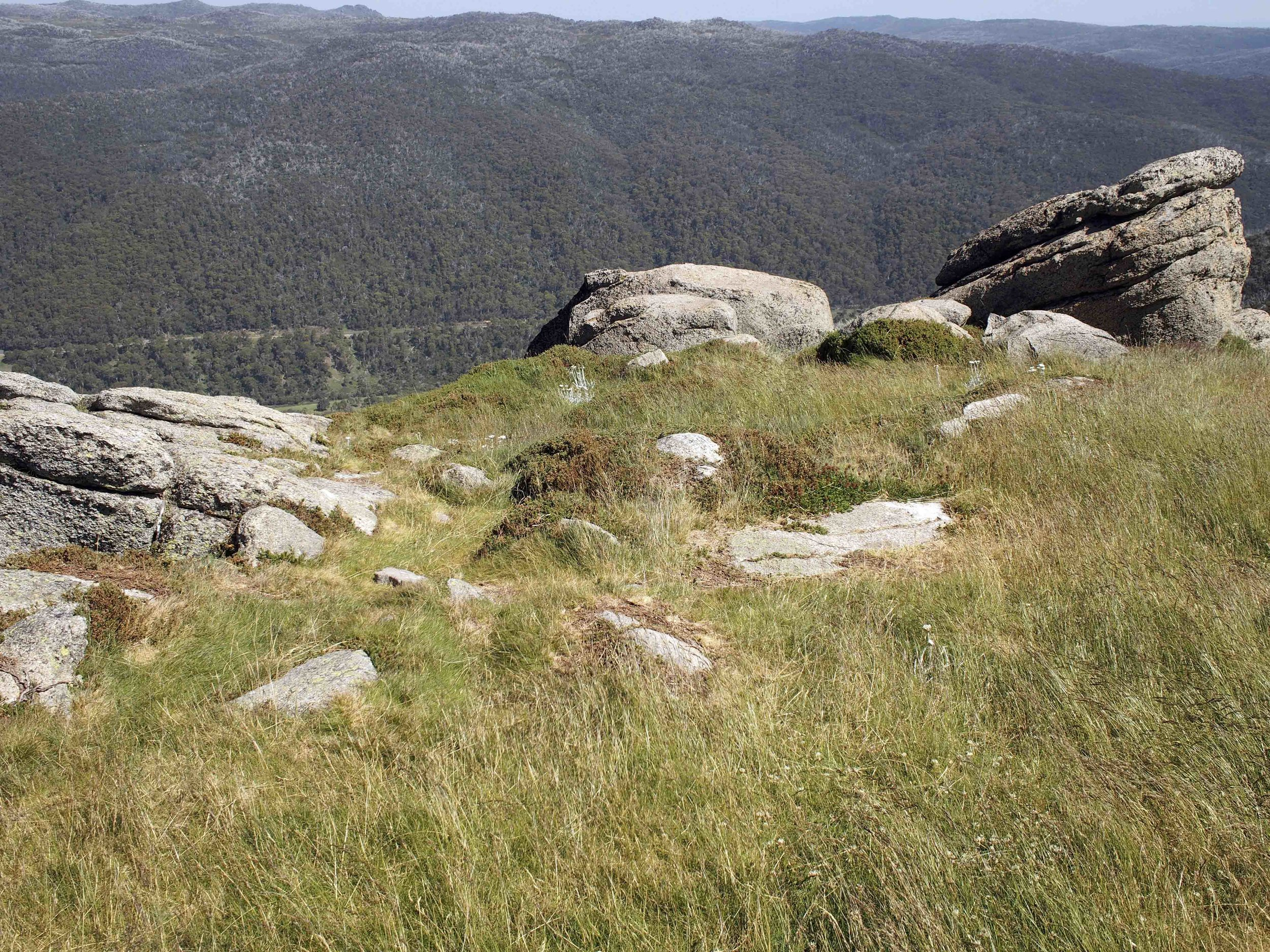 Crackenback Ridge