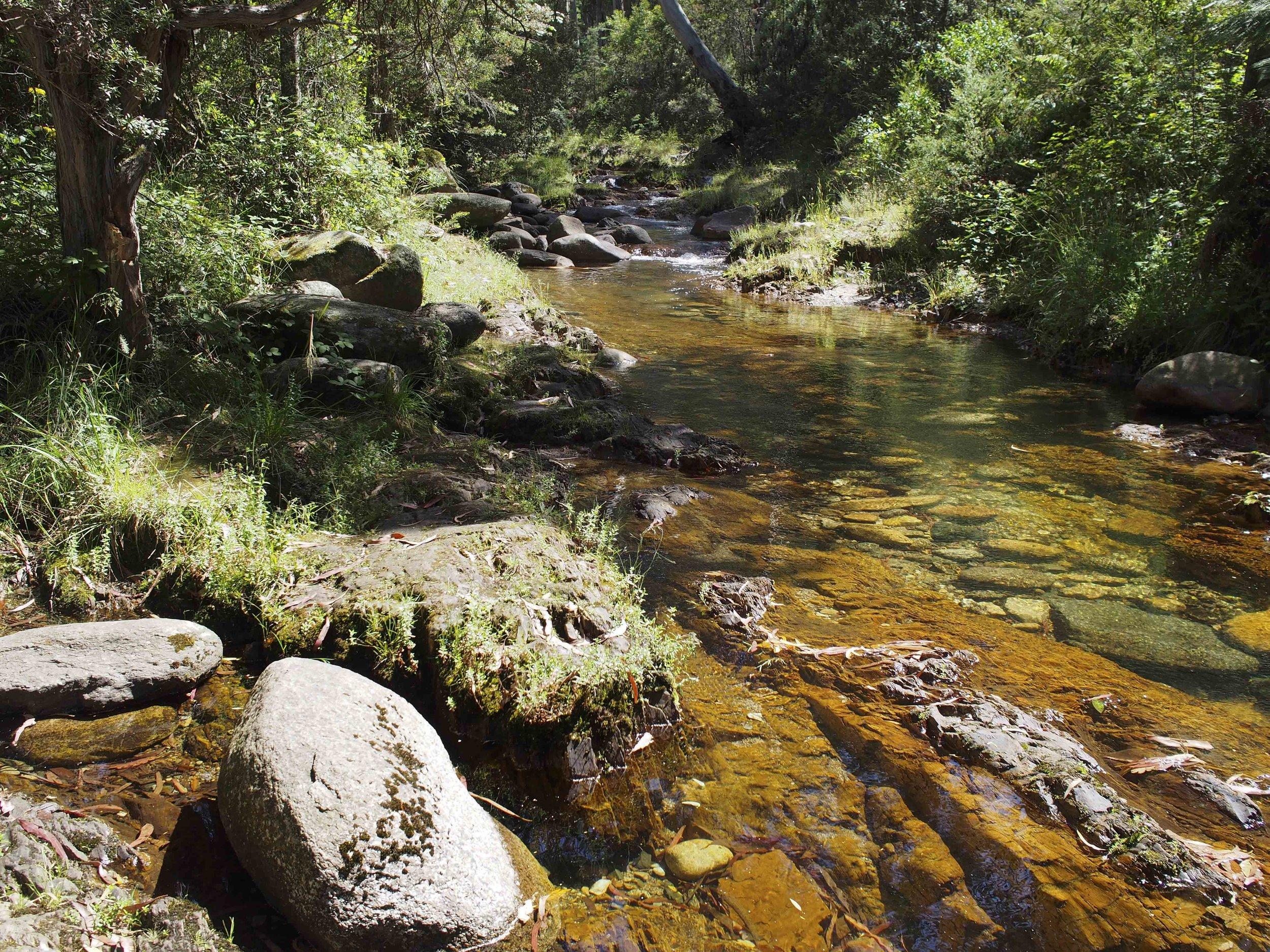 Leatherbarrel Creek