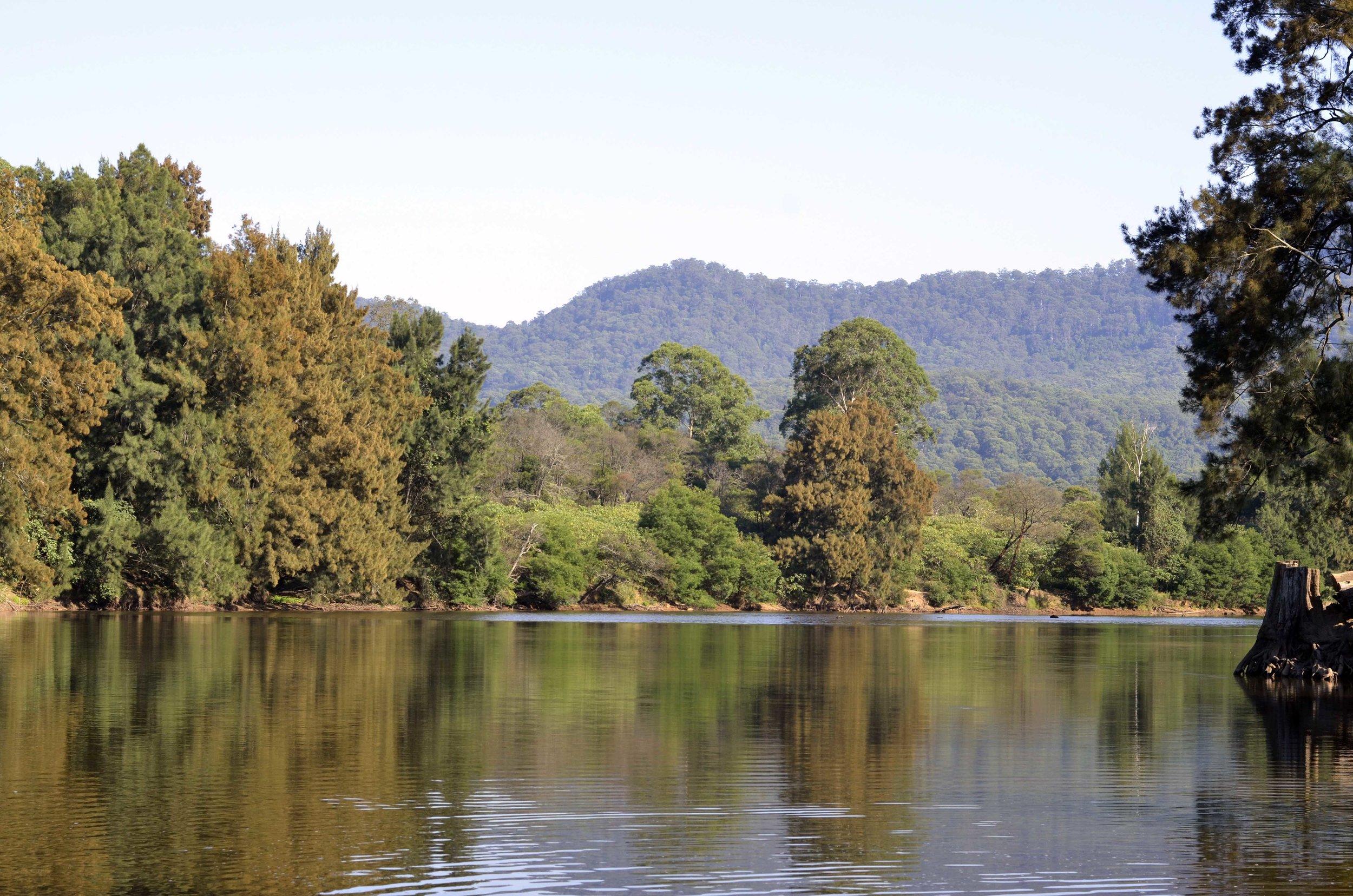 Down the Kangaroo river