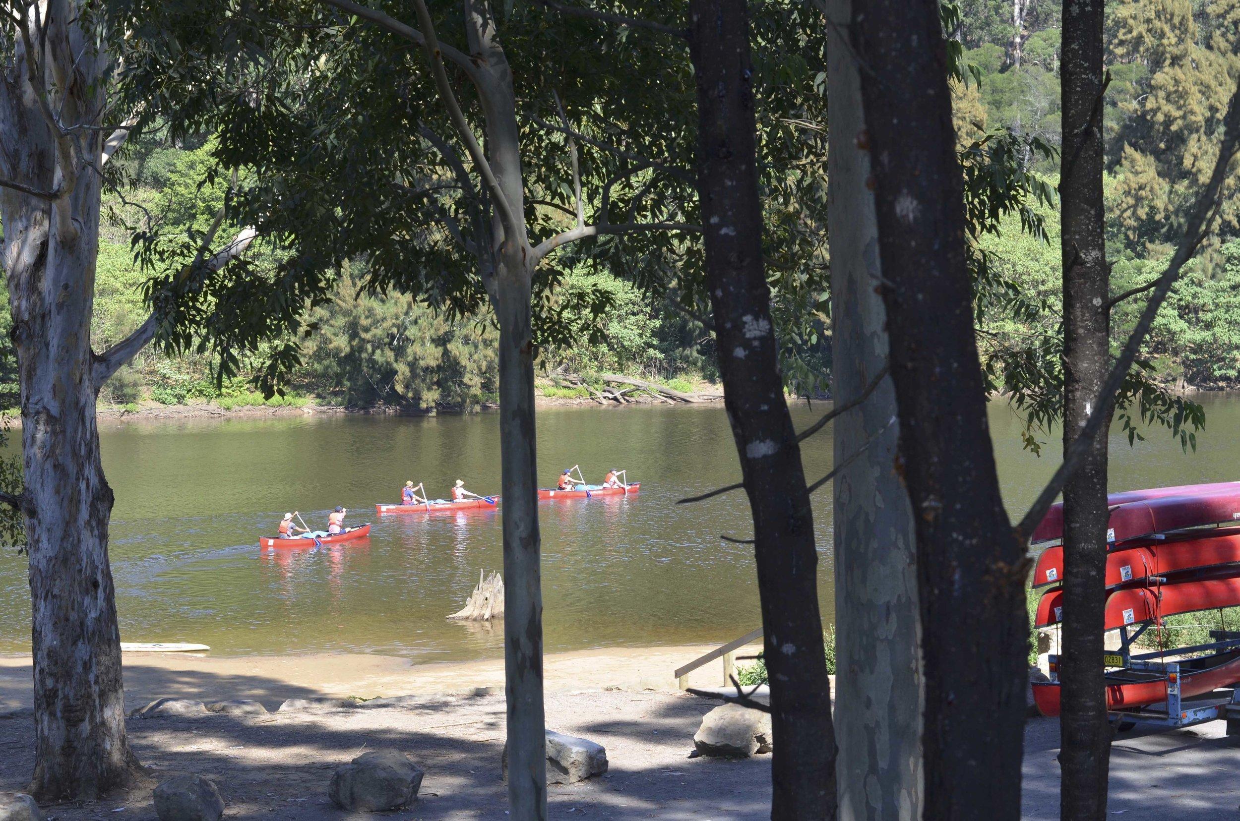 On the Kangaroo river
