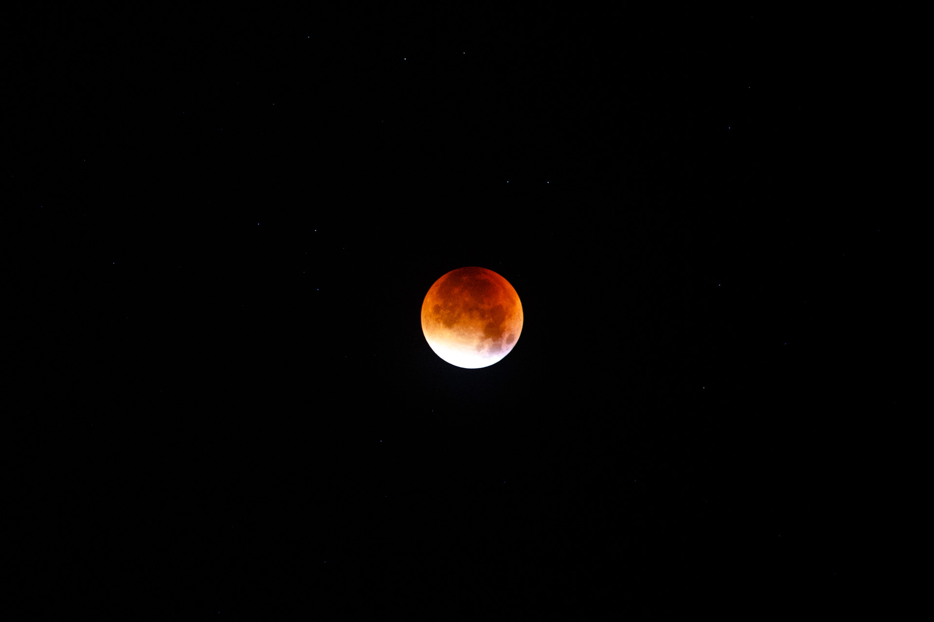 The Bloodmoon made its appearance around 3am!