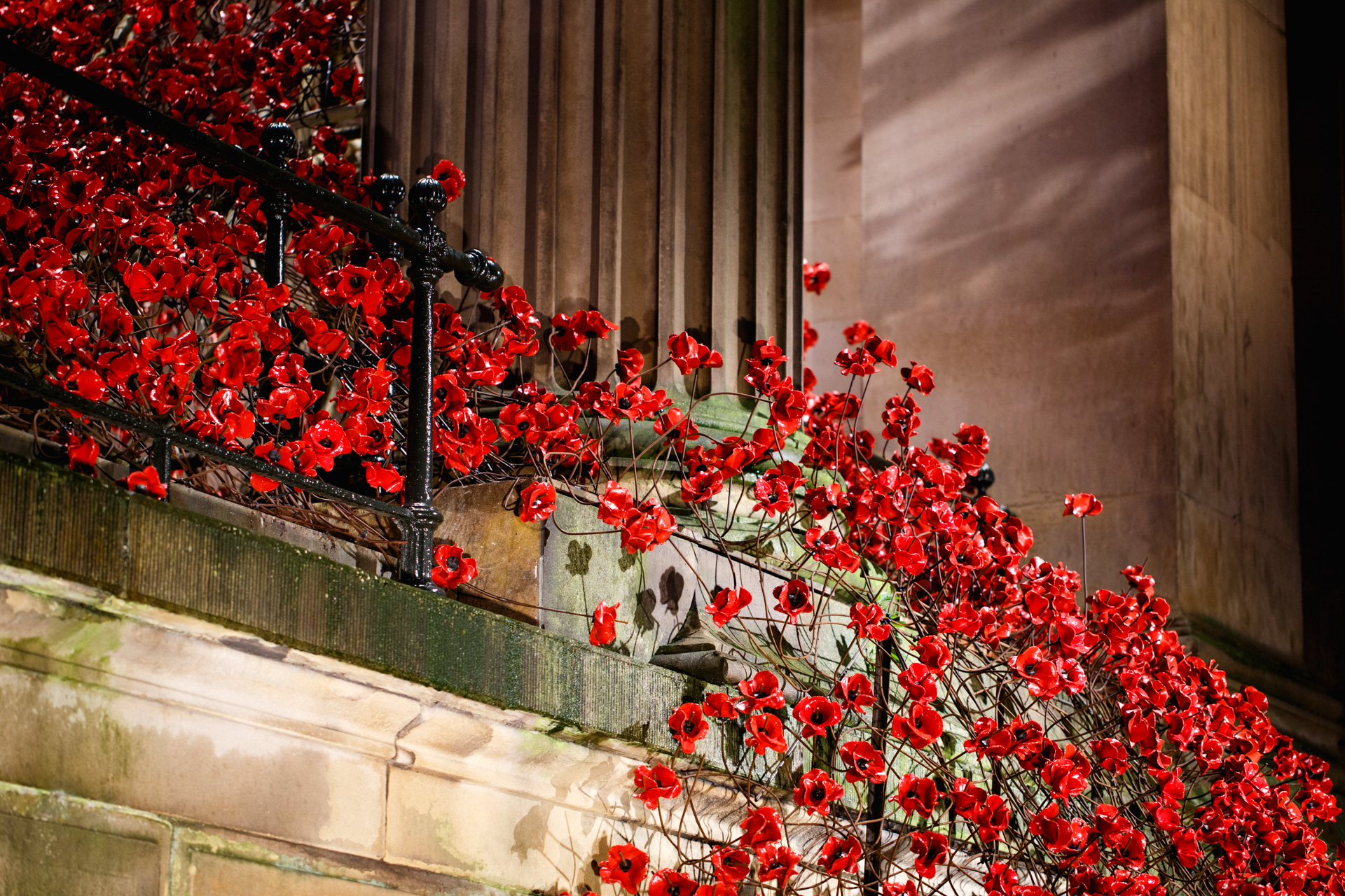 Weeping Window Paul Cummins Tom Piper Liverpool St.George's Hall Andrew Wilson Photography (24).jpg