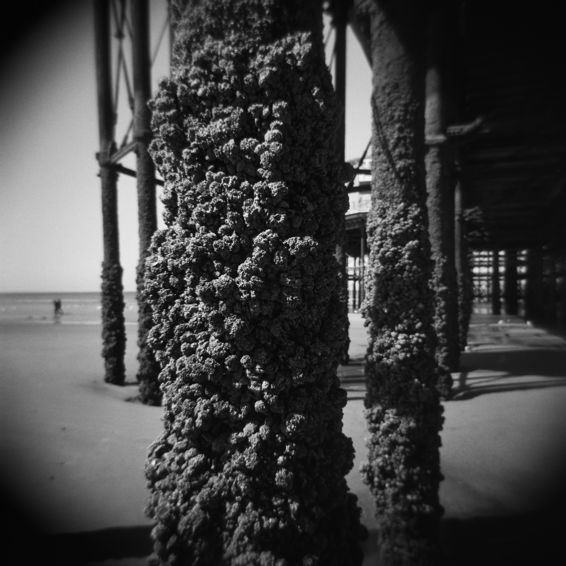 Andrew Wilson Photography Blackpool Holga (3) North Pier.jpg