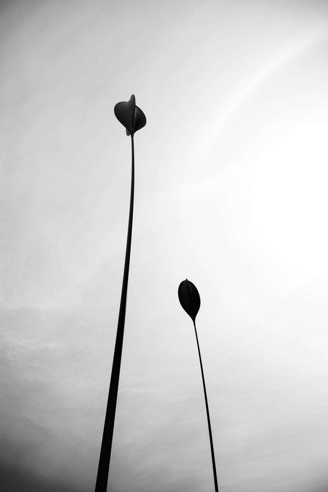 Andrew Wilson Photography Blackpool (22).jpg