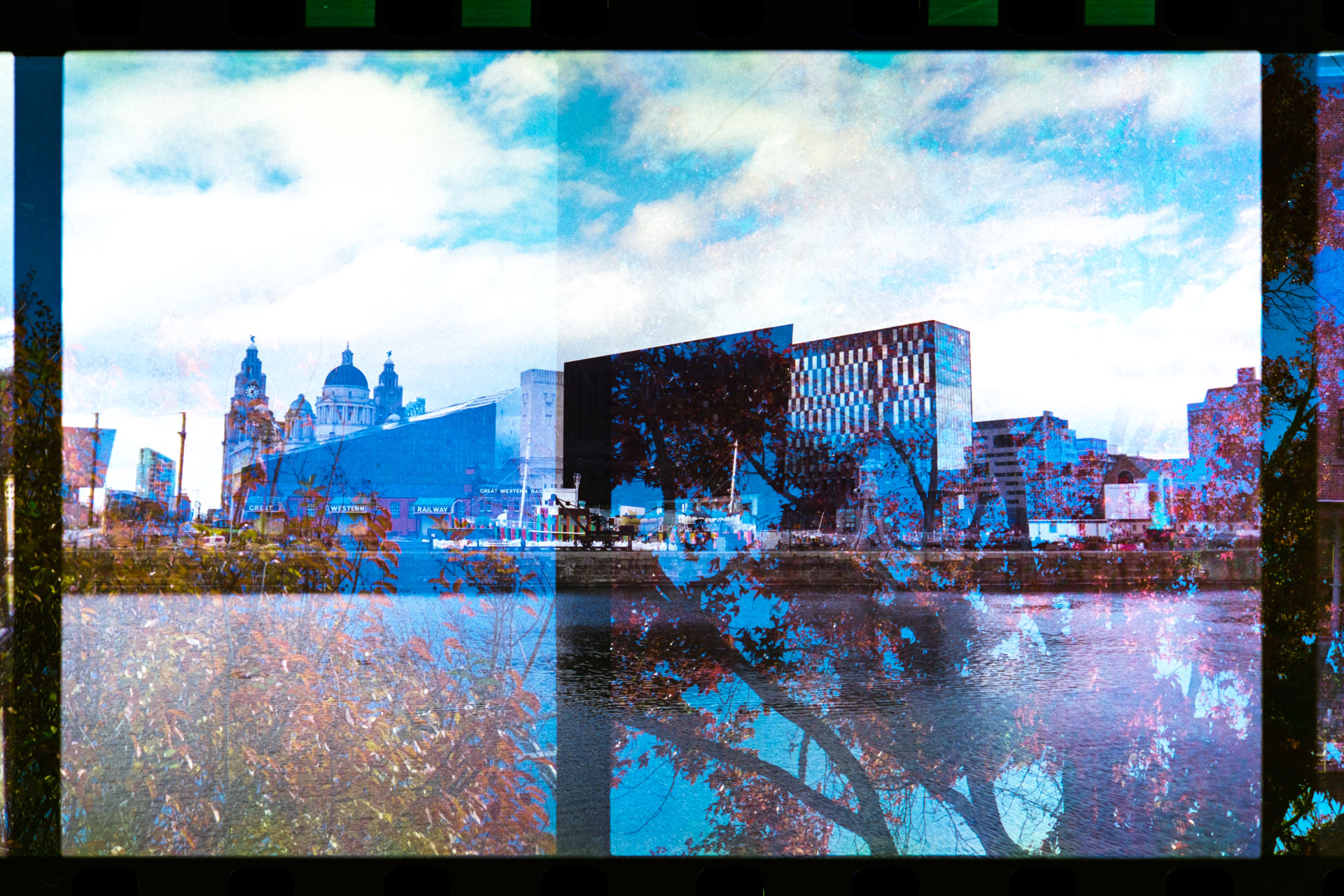 Liverpool's waterfront combined with autumnal/winter leaves.