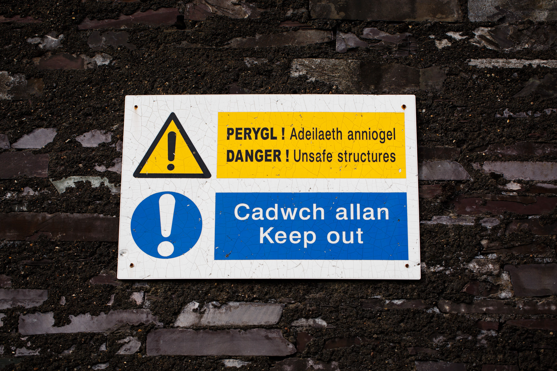Cymraeg / English
