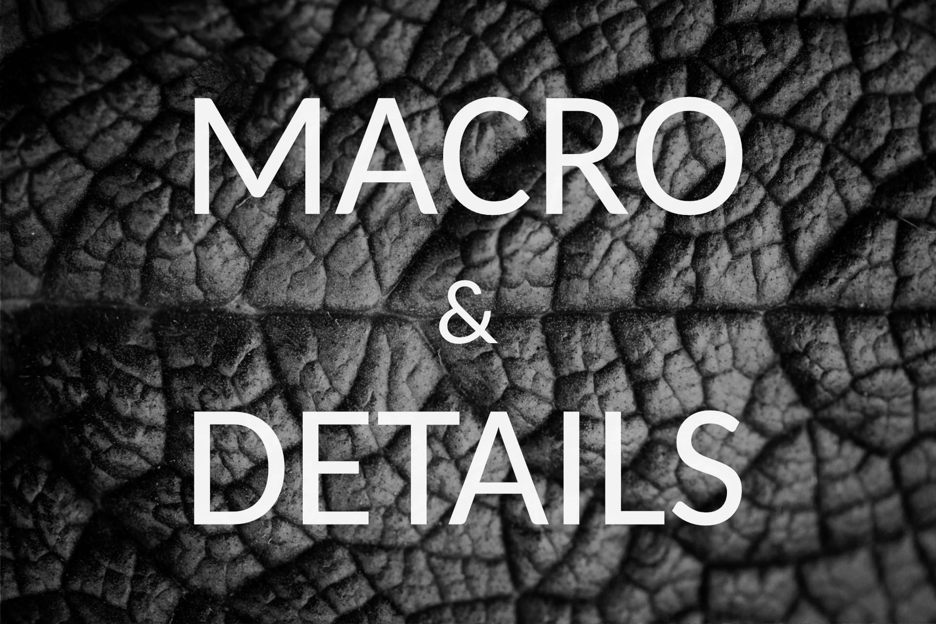 Macro & Details.jpg