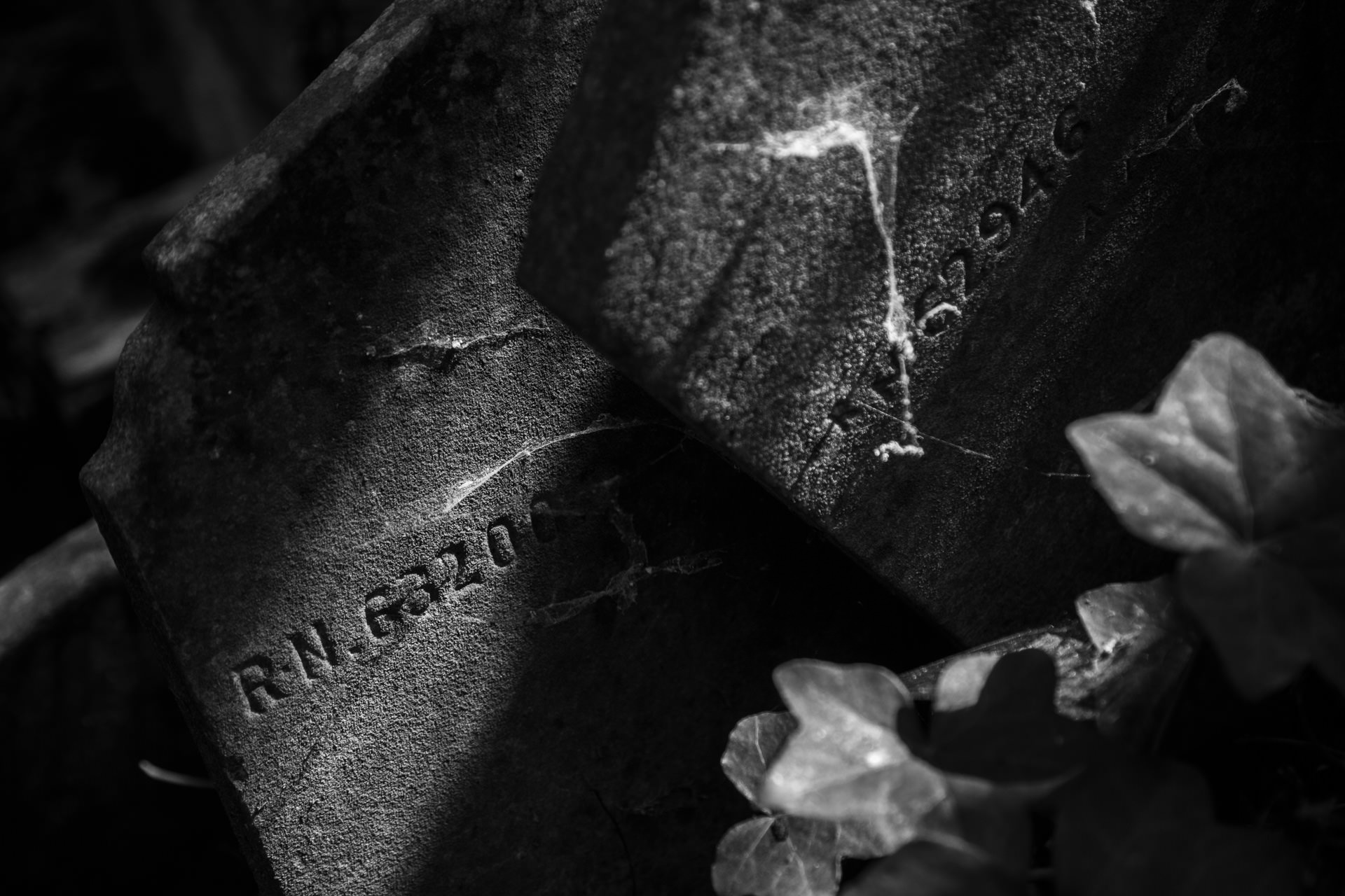 Gravestone details from Abney Park, a large meandering garden cemetery in Stoke Newington.