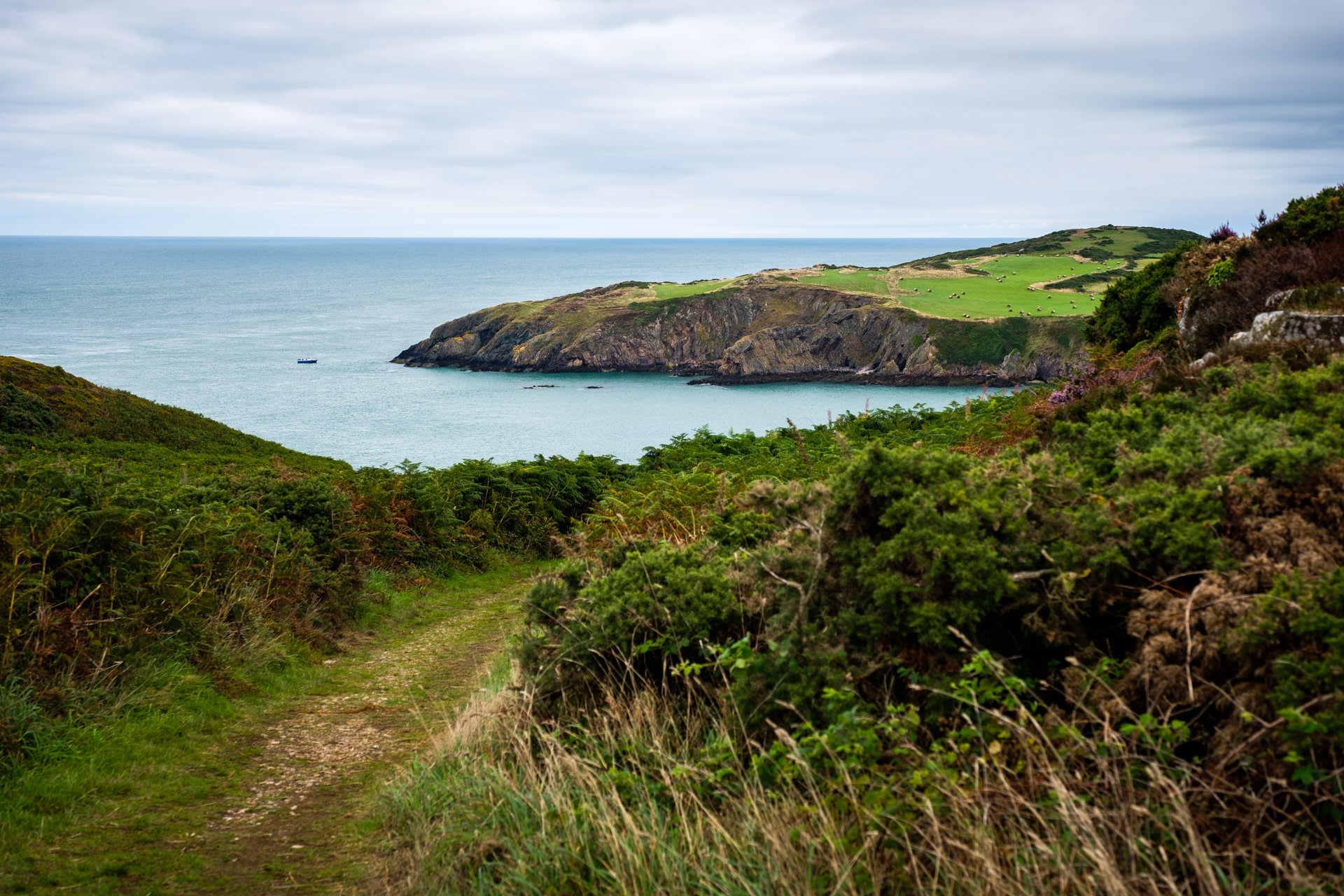 The view down to Porth Wen…