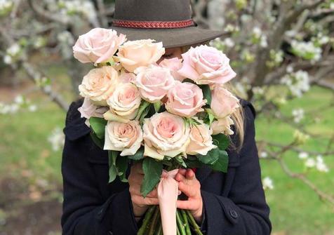 Rose bouquet en masse