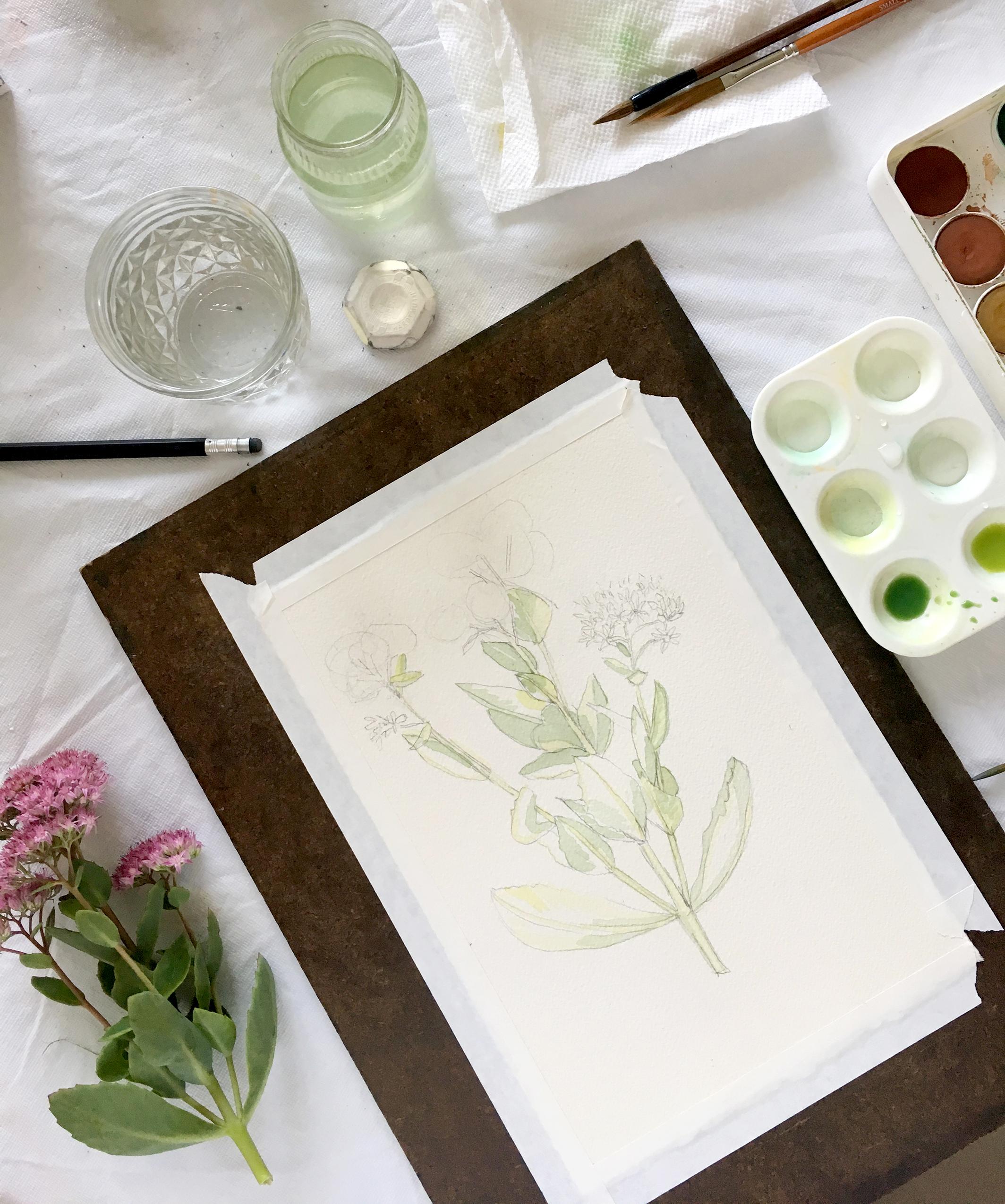 Watercolor progress Sharon Holland.jpg