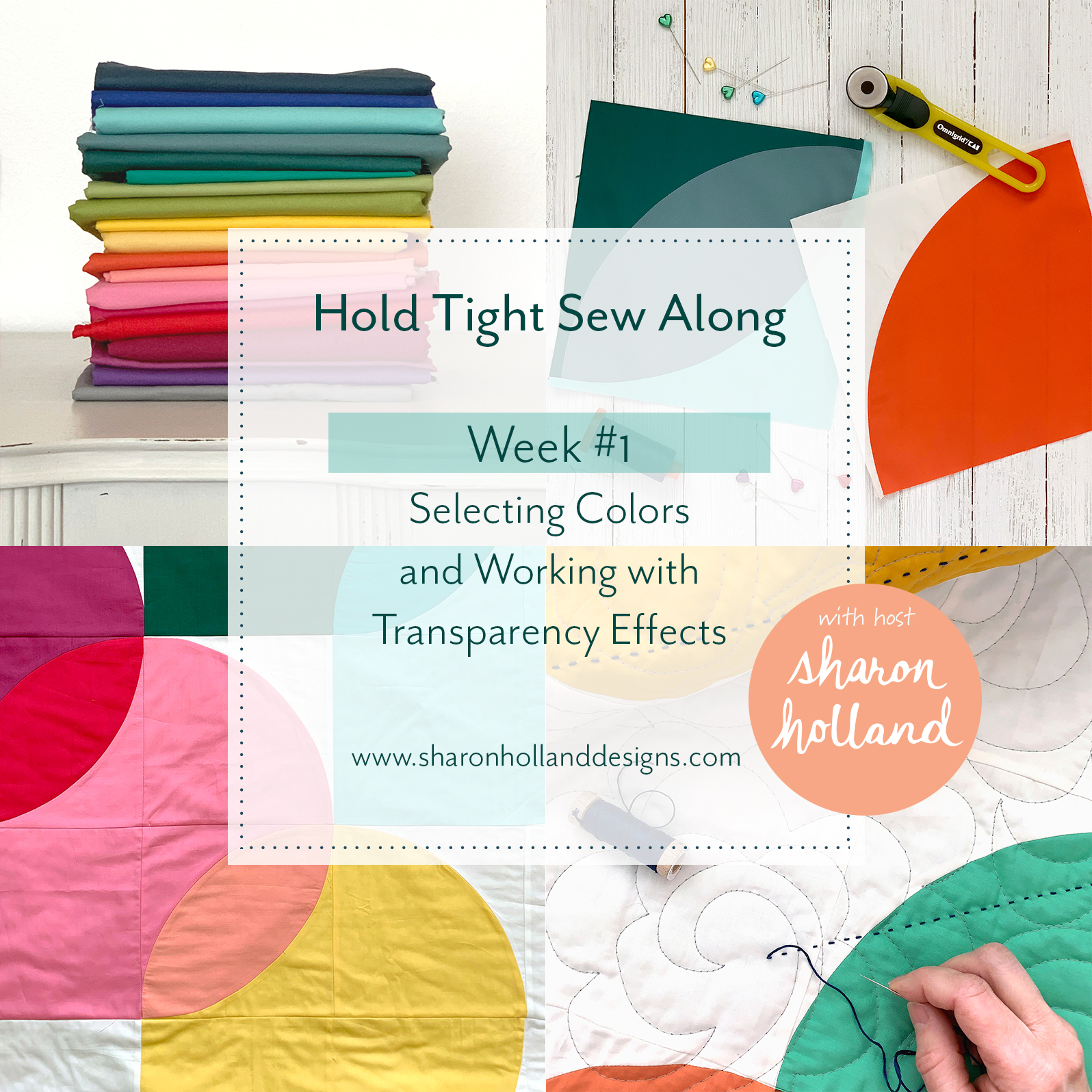 Hold Tight Sew Along 1 Sq cover.jpg