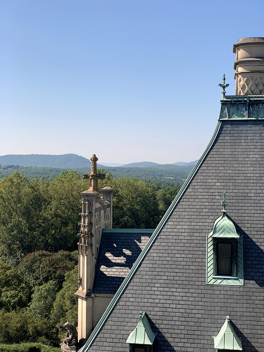 Rooftop of Biltmore Estate
